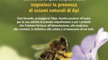 L'APE, SENTINELLA DELL'AMBIENTE
